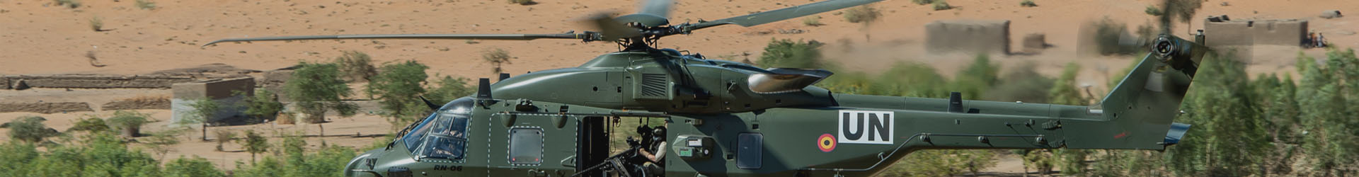 Header wings - Belgian Air Force Association